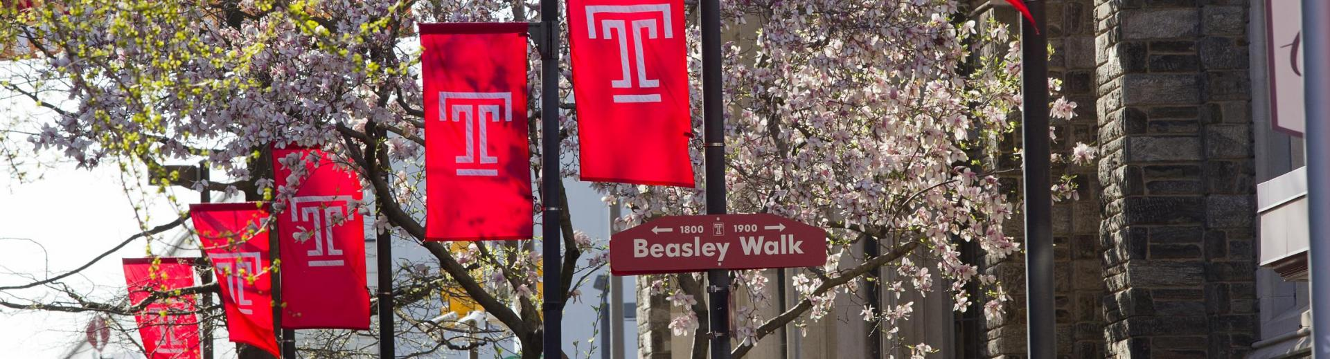 A picture of Temple flags cascading through Liacouras Walk