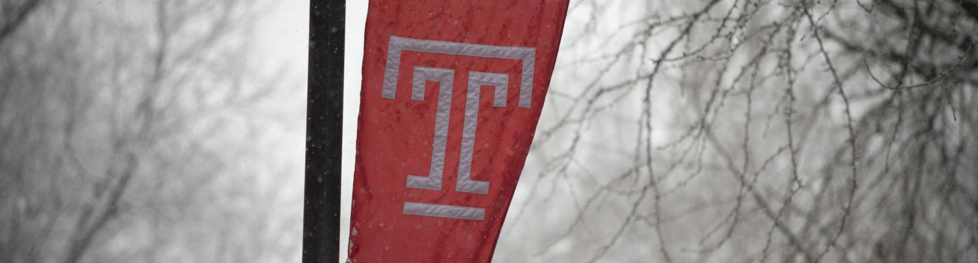 Temple Flag in Snow